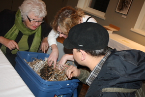 Jackie Chalmers, Anine Vonkeman and Dan Rollingson look for worms in the Galt Museum's worm composter. Photo by Richard Amery
